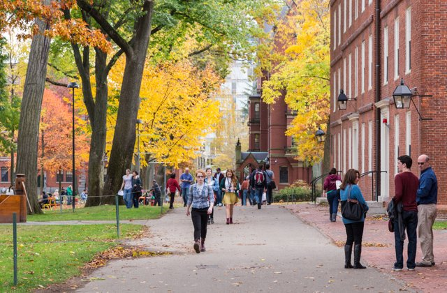 Understanding Different Types of Colleges in the U.S.
